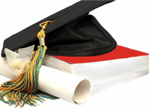 Higher Education or Lower Education?