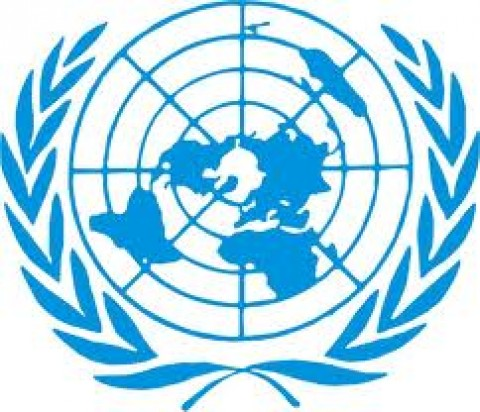 2013 will be a decisive year: UN chief