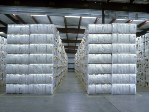 Ginning factories receive 20.5pc less cotton bales