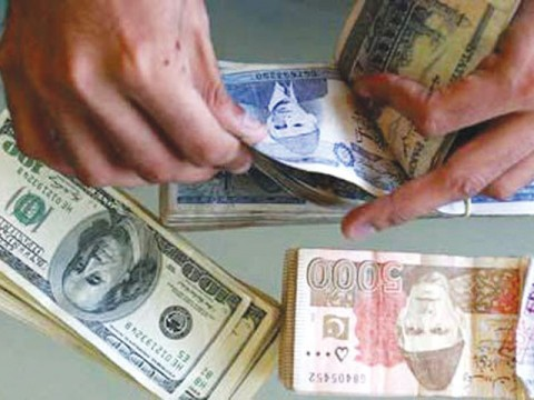 US dollar gained 8pc versus rupee in 2012